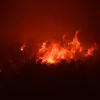 'Firefighters are going to stay busy': Crews battle California wildfires nearing giant sequoias, world's largest tree